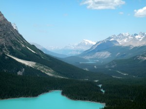 Lake Peyto, Banff National Park, Canada, 2010, taken by Martha Wiggins